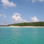 鳩間島から全国展開へ 宝の島プロジェクト