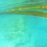 宮古島海中公園がオープン