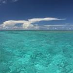 宮古島 「幻の大陸」散策 池間島沖、八重干瀬に300人